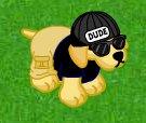 Clever Dude's Webkinz Pet